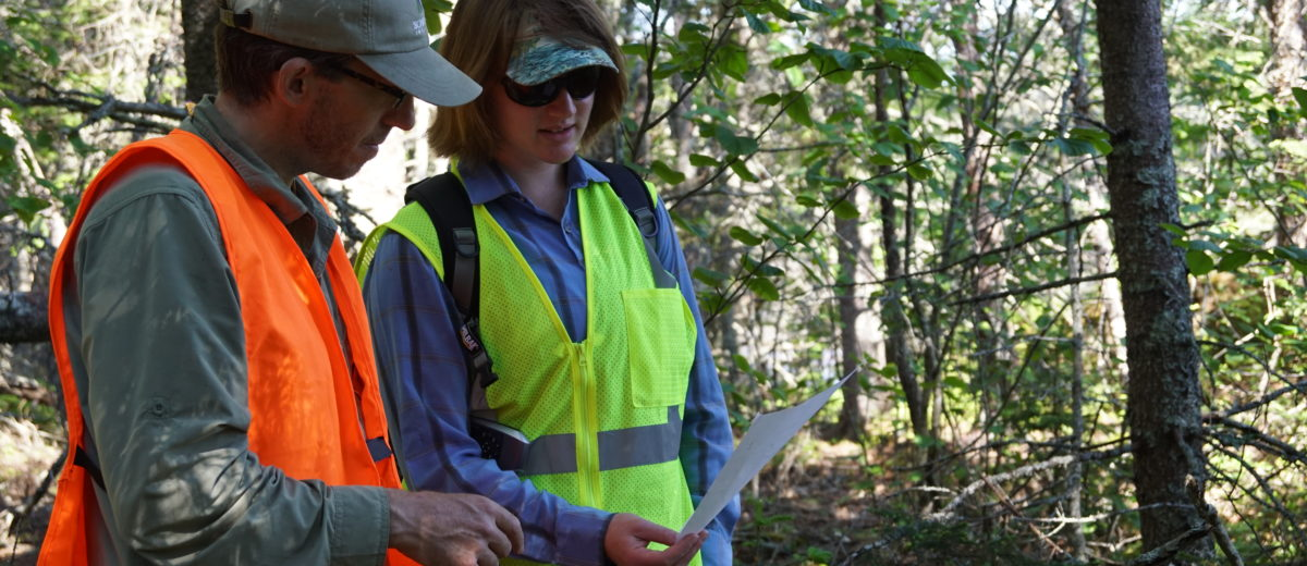 photo of two scientists looking at a paper in the woods
