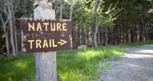Nature Trail sign at Acadia National Park, Maine.