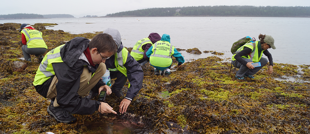 photo of scientists working in intertidal pools