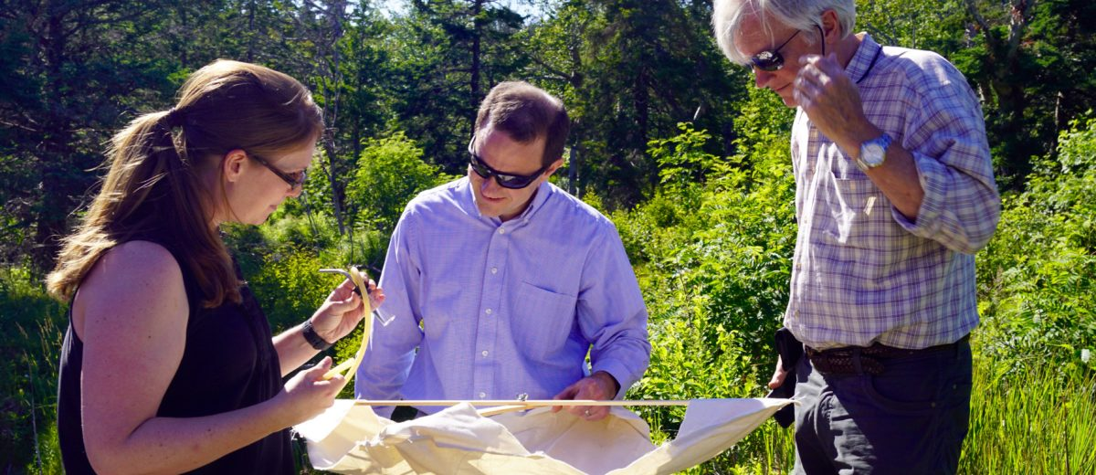 photo of three scientists in the woods looking over samples