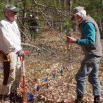 Volunteers helping establish a planted grid of tree seedlings.