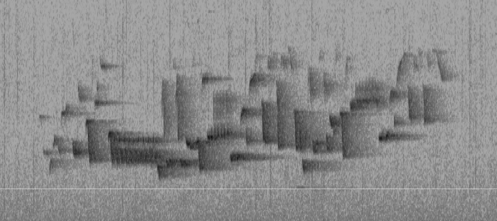 Black lines and shapes of a spectrogram– a visualization of sound — of the song of a Winter Wren