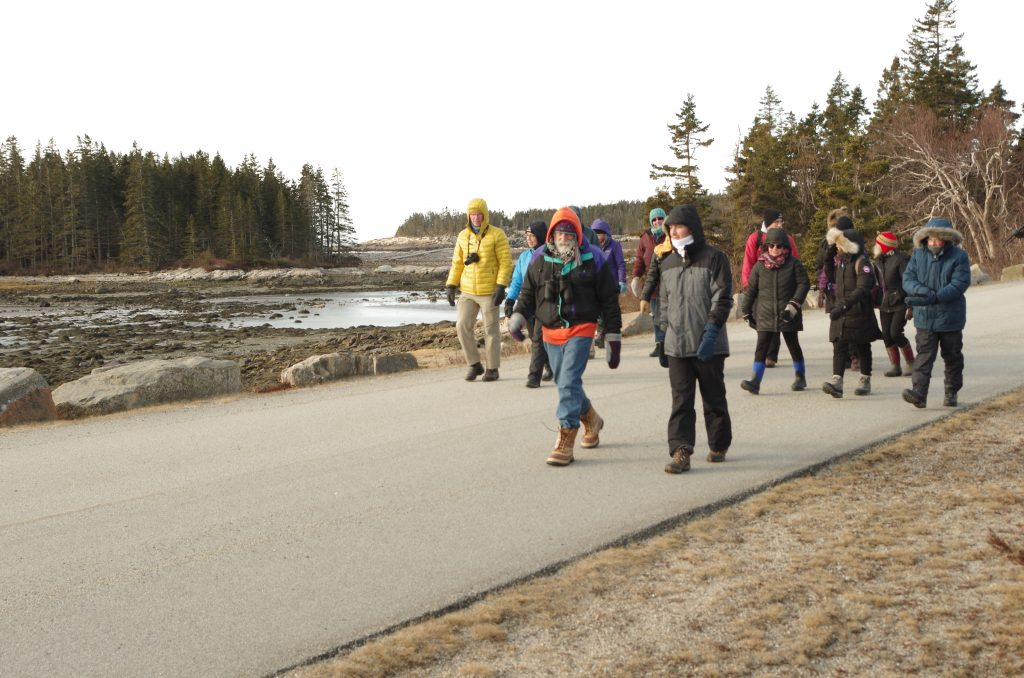 A group of people walking on a road with rocky shoreline in background