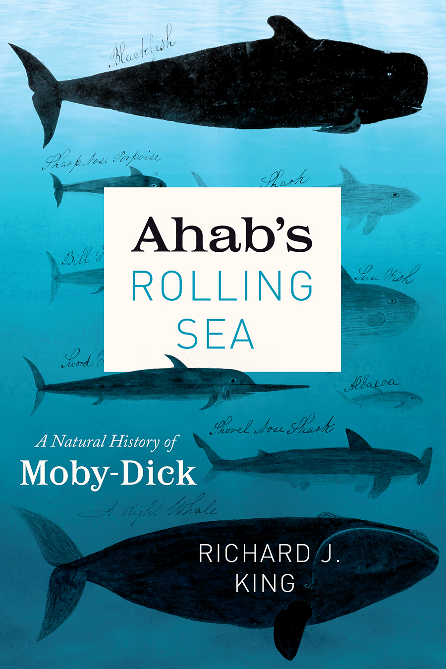 Cover of Ahab's Rolling Sea