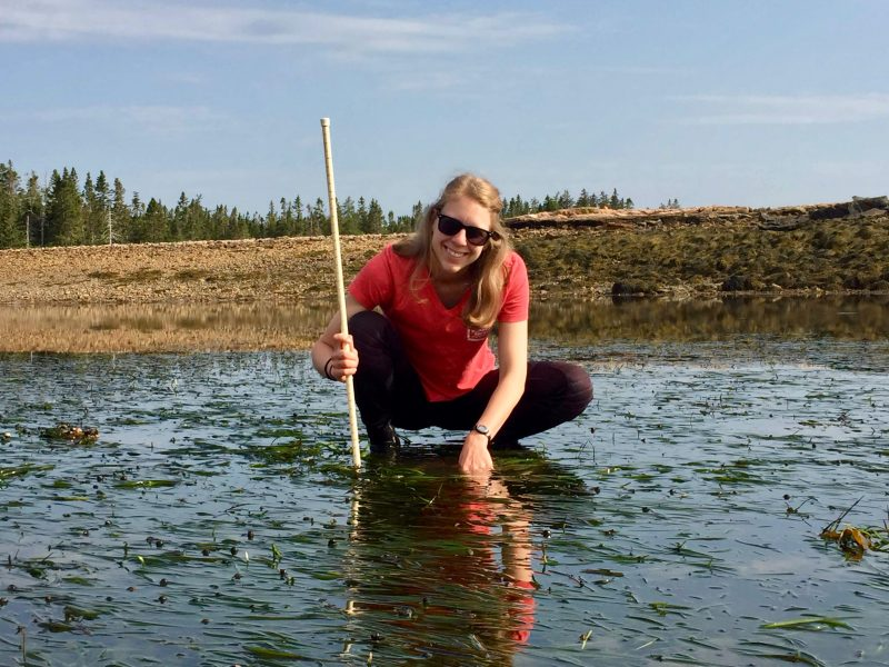 Woman squatting in shallow water with floating eelgrass