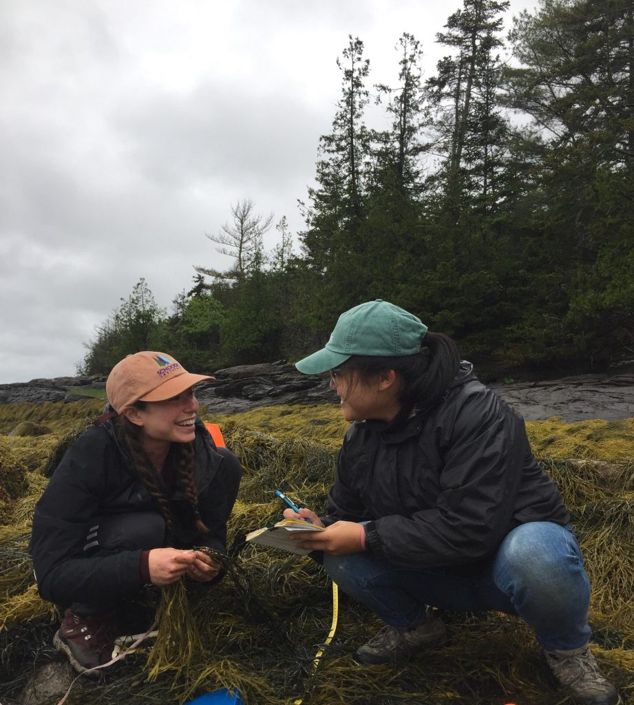 Two smiling people squat on rockweed-covered rocks, one with notebook and pen in hand.