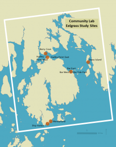 Map showing eelgrass study sites.