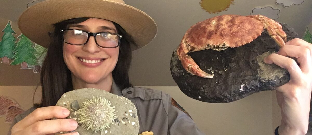 A park ranger holds up a crab and sea urchin.