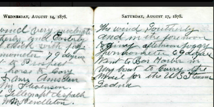 Image of an entry from Freeland Rosewood Bunker's 1878 journal, cursive writing in ink