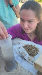 Sophie Chivers places tiny clams into a measuring column of water.