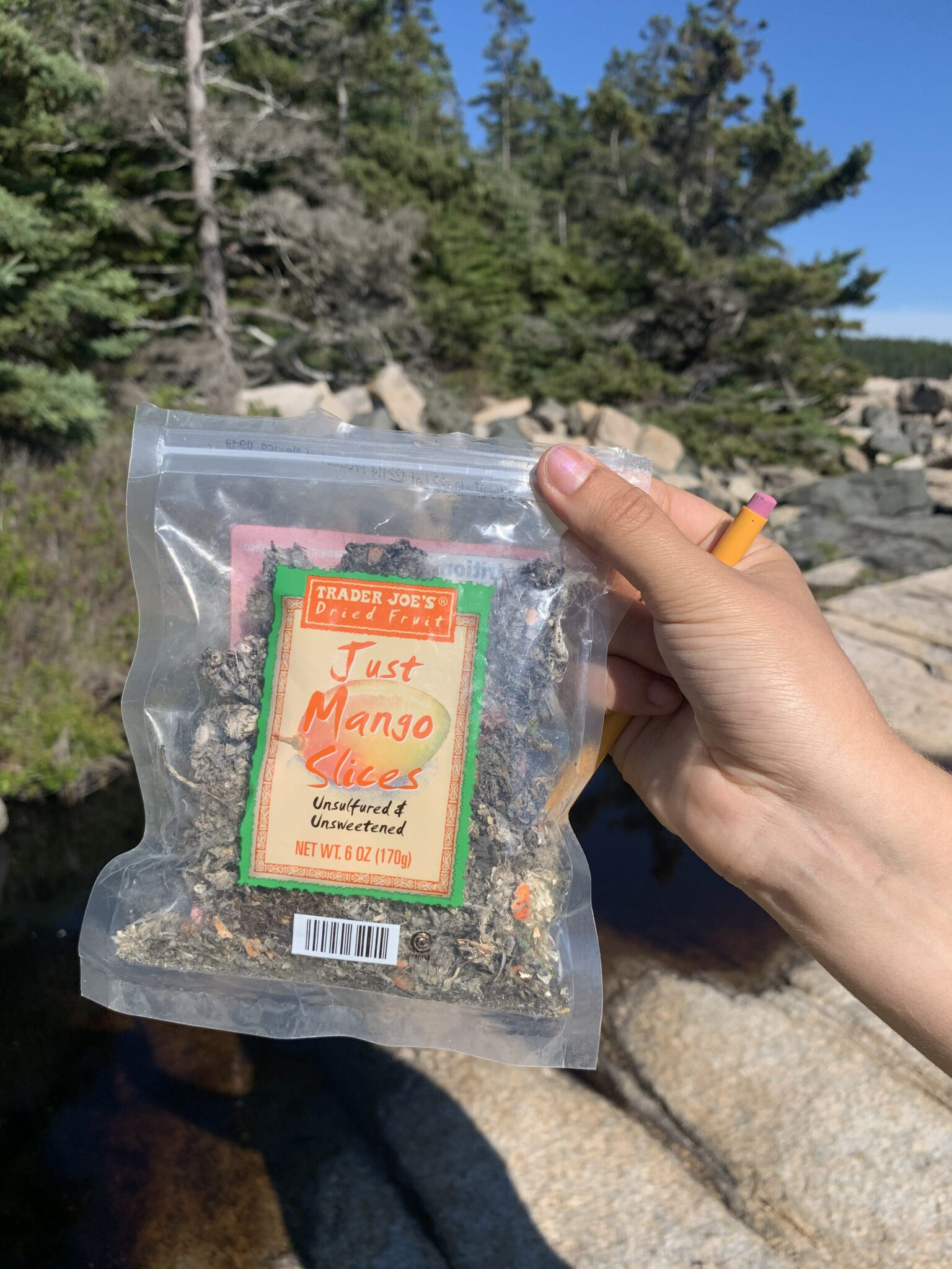 A person's hand holds a bag of Just Mango Slices with trees and rocks in background